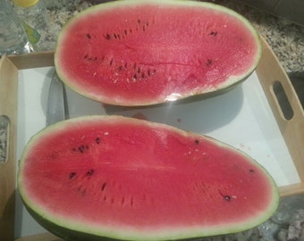 Organic Congo Watermelon Seeds - Hands Down Our Favorite to Grow - 10 Seeds