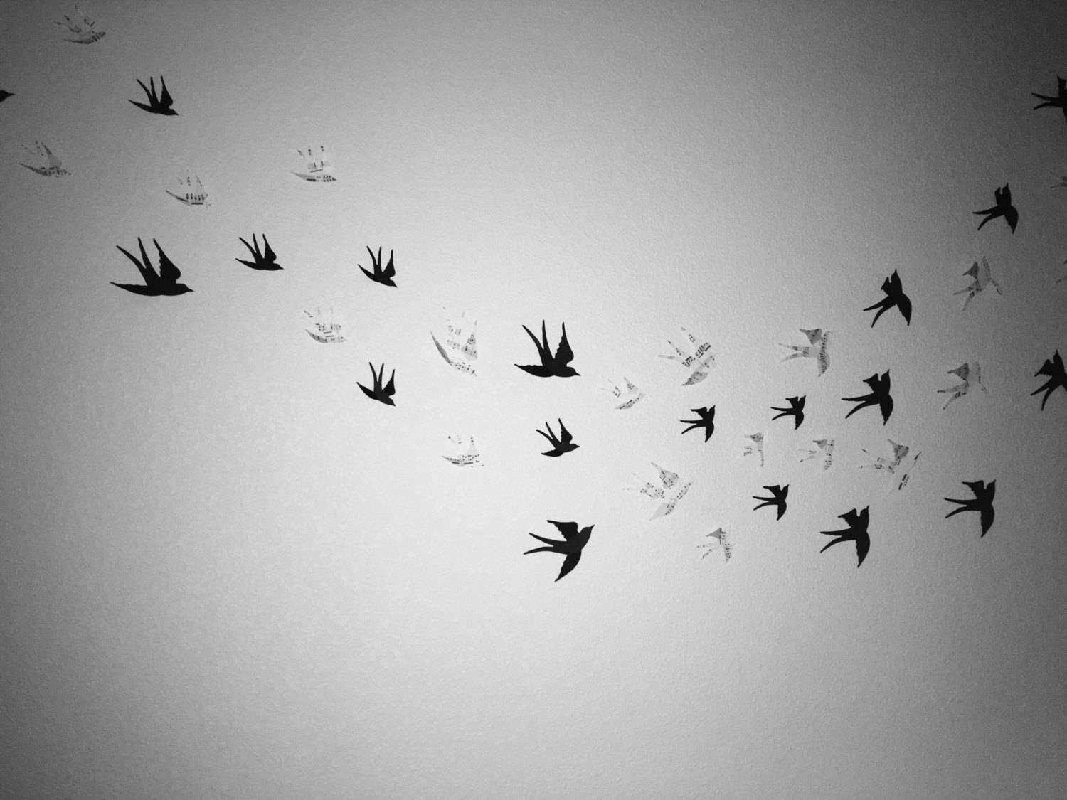 gallery photo gallery photo gallery photo ... & 3d Birds Wall Art. Choose From 48 Colors In A Quantity of 24 48 or ...