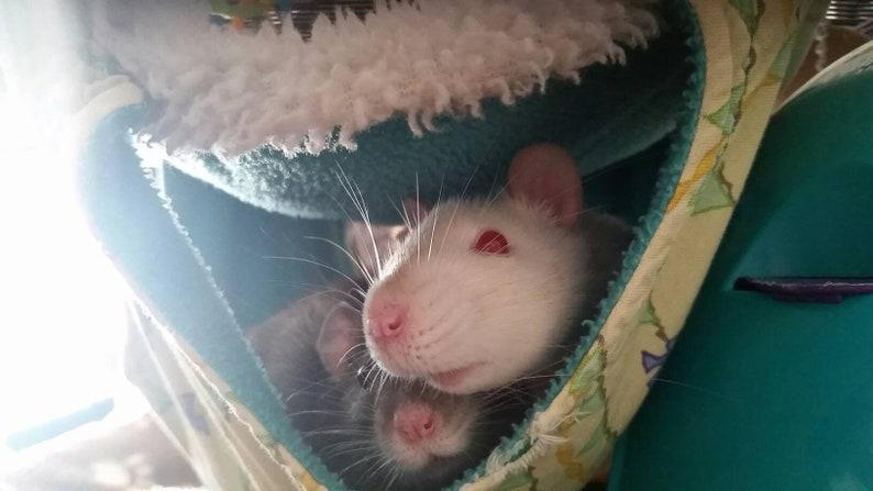 pet rat small animal hammock small animal cage accessories small animal hammocks rats rat Rat hammock rat hammocks cage set