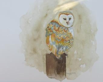 Barn owl, Original watercolor painting