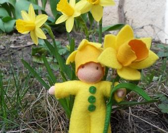 NARCISSUS Flower child