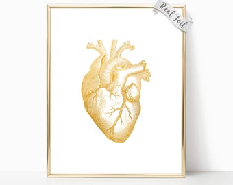 Human Heart Gold Foil Print - Anatomical Heart - Medical School - Medical Student - Med School Gifts - Medical Office Decor - Doctors Office