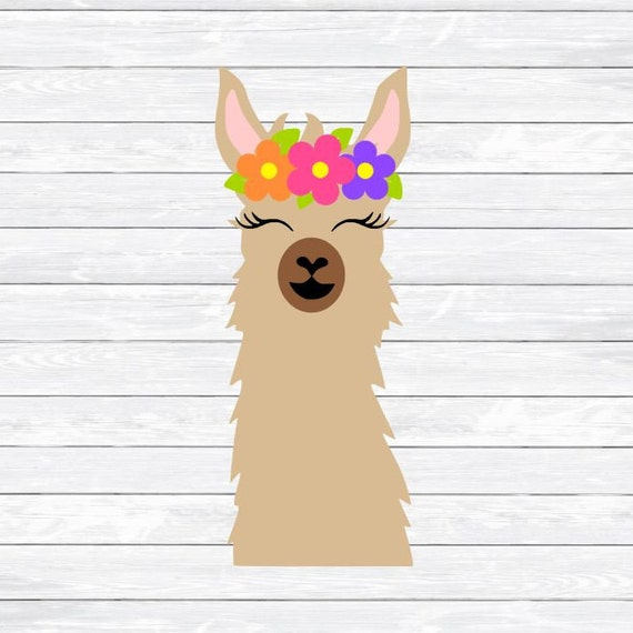 Image result for llama clipart