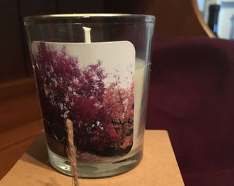 """No. 14 """"Leaves"""" Votive Candle: Handpoured, Handmade Soy Candle With Custom Photograph By Brian McCullah (Vanilla Scent)"""