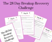 The 28 Day Breakup Recove...