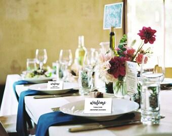 Wedding Place Cards Template, Printable Wedding Place Cards, DIY Place Cards, INSTANT DOWNLOAD #T04-001