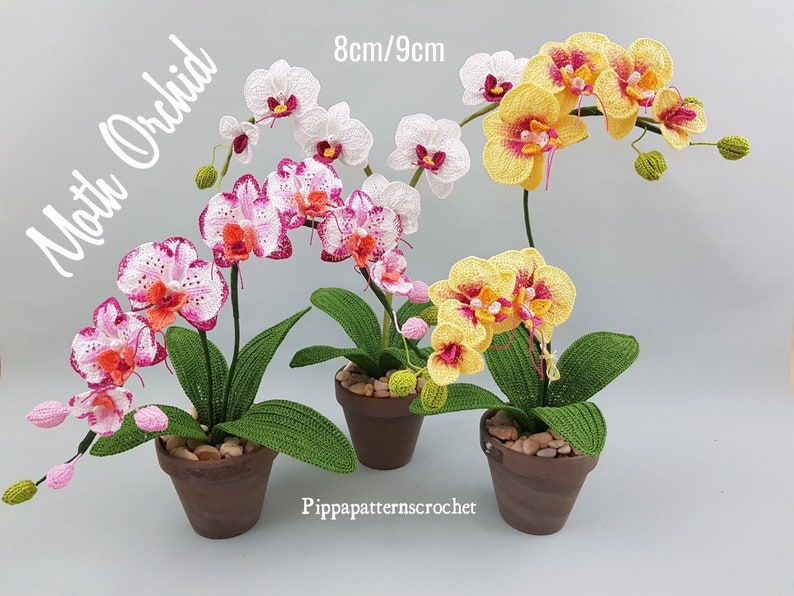 Crochet Moth Orchid  Pattern   Crochet Flower Pattern  image 0