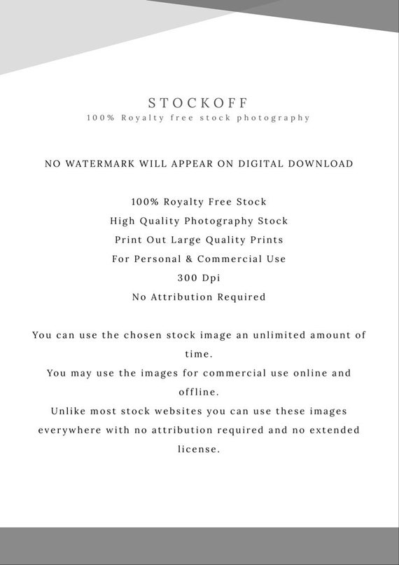 Royalty free images, chocolate croissant photography, food photography,  instant download for personal and commercial use by stockoff