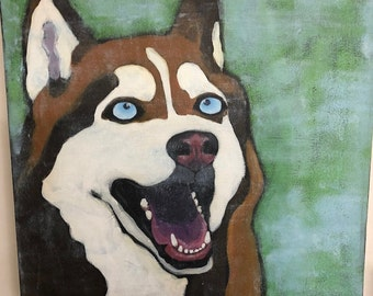 Dog portrait, Husky