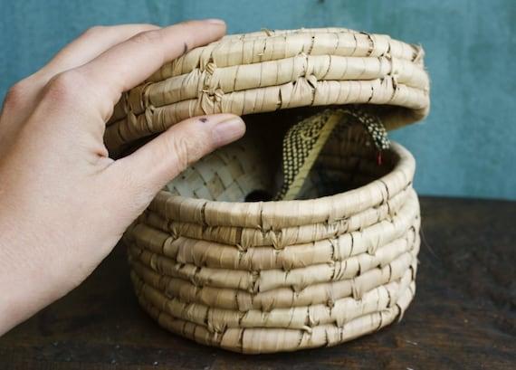 Wooden Snake in the Basket