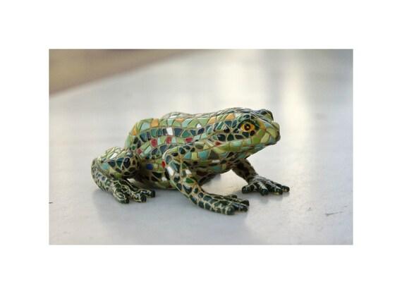 Mosaic Green Frog