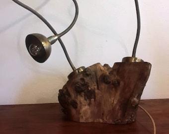 olive tree lamp