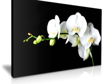 White Orchid Flower Canvas Wall Art Picture Print 76cmx50cm