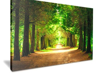 Large Green Forest Tree Canvas Wall Art Picture Print 76cmx50cm