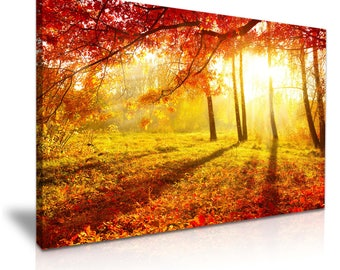 Large Red Forest Tree Sun Canvas Wall Art Picture Print 76cmx50cm