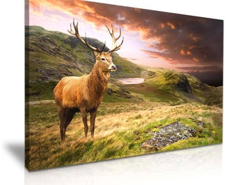 Deer Stag Mountain Canvas Wall Art Picture Print 76cmx50cm