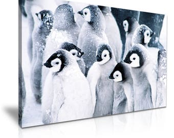 PENGUIN In Snow Canvas Wall Art Picture Print 76cmx50cm