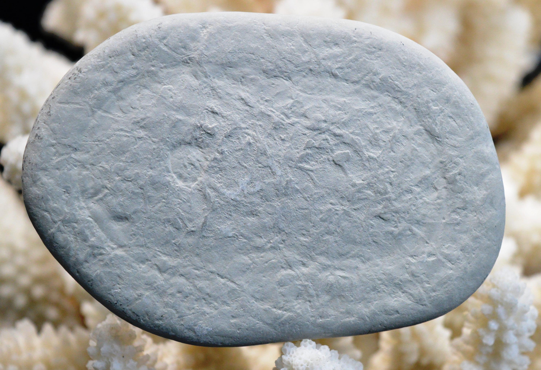 76.3 grams Harricana River Fairystone Quebec Canada