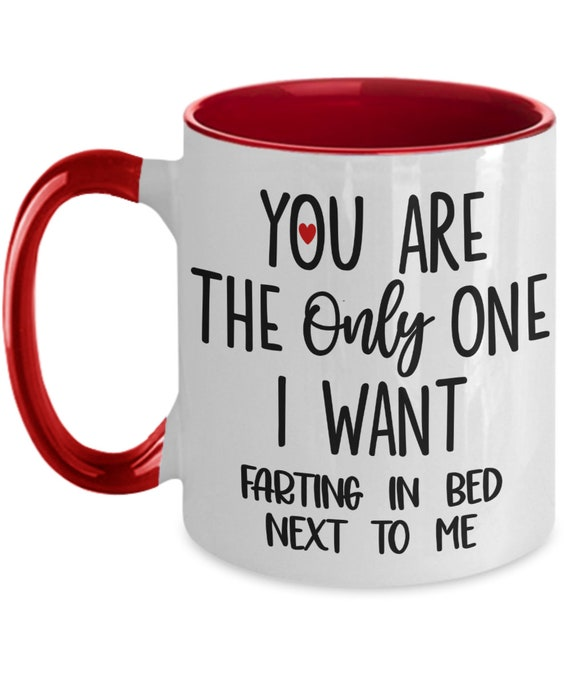 Funny Valentines Mug for Husband Gifts from Wife Mug for Him I Love You Fart Mug Two Toned Coffee Mug Youre My Person Gag Gifts for Her