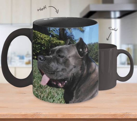 Personalized Color Changing Mug Custom Mug Magic Mug Picture Mug Pet Photo Mug Personalized Cup Custom Photo Mug Wedding Gift for Men Mugs