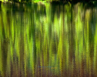 VARIATIONS IN GREEN, Landscape Photography, Fine Art, Lake, Reflections, water, trees
