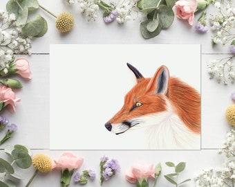 Fox - Print