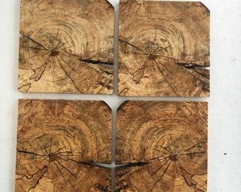 Spalted Wood Coaster Etsy