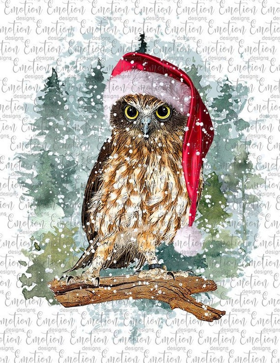 Christmas Owl.Christmas Owl In Forest Clipart Instant Download Sublimation Graphics Png