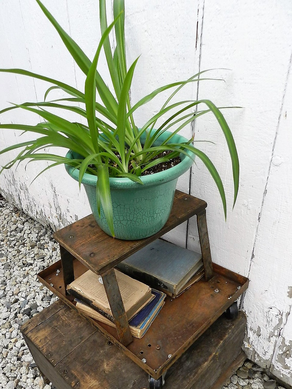 INDUSTRIAL CART/PLANT Stand/Book Storage