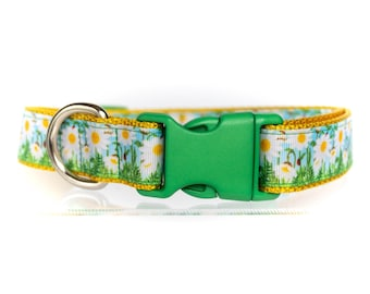 Summer Daisies - Golden Yellow and Green- 1 Inch Webbing Quick Release Dog Collar - See Item Details for Sizing