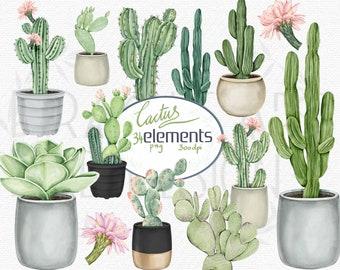 Watercolor Cactus Clipart, Tropical Cacti clip art, desert succulent png, summer wedding graphics, commercial use, digital download, instant