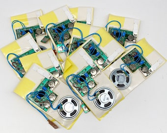 DIY Recordable Audio Module - 10 Seconds - Pack of 12- ***SPECIAL OFFER***