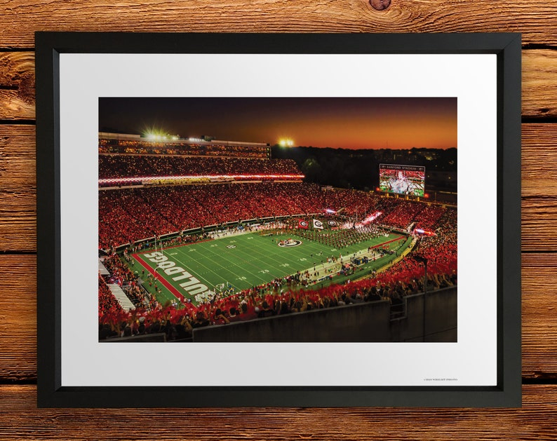 Graduation Dawg Caves Kids UGA: Georgia Bulldogs vs Notre Dame Big Night in Sanford Stadium Art Poster Dorm Photo Picture Home Decor