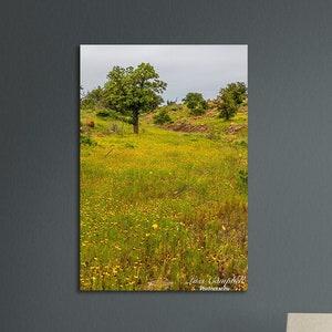 Mini Texas Blue Bonnets Landscape by Pat McKinney