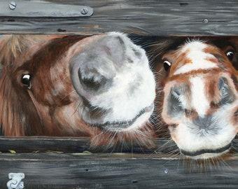 Ponies, Shetland ponies, pony, horse, horses, noses, acrylic paint, acrylics, art print, limited edition