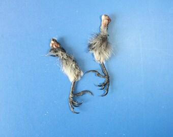 Decor Talisman 2 Natural Bird's Feet Charms stuck position preserved bone feathers
