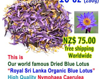 Blue Lotus Herb Etsy