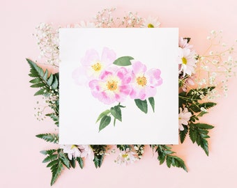 Wild Rose greeting card / Dog Rose watercolour illustration / blank card / original watercolour print / square fine art card