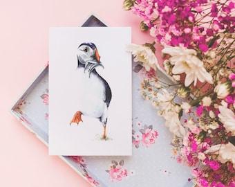 A6 Puffin greeting card / watercolour wildlife art / blank card / original watercolour print / fine art card