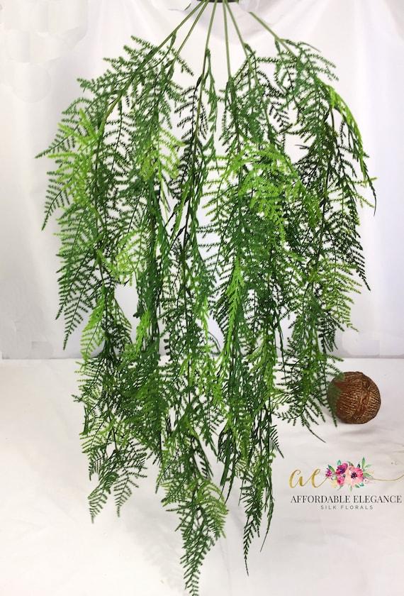 33 Faux Asparagus Fern Plumosa Fern Hanging Greenery Etsy