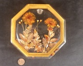 Retro Lucite Dried Flower Trivet Hot Pad Plate 6 Inch Octagon Orange Brown Kitchen Decor Seventies Style Embedded Floral American 1970 39 s USA