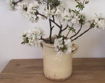 Gorgeous. Italian vintage confit pot, 19th. 7' tall Cream/Ivory glazed terracota pottery. Free shipment worldwide.