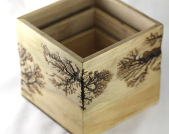 3 Wooden Box Planters - With Fractal Burns