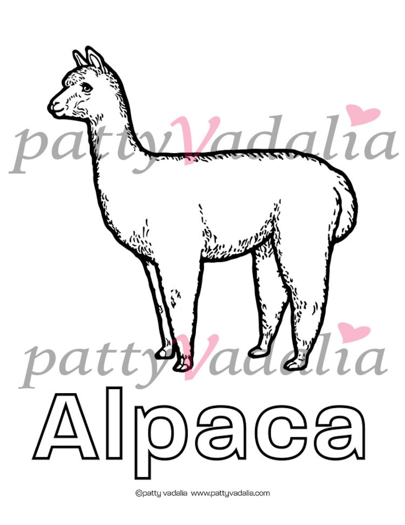 realistic farm animal coloring pages 5 instant downloads etsy realistic farm animal coloring pages 5 instant downloads rabbit cow alpaca goose goat educational classroom home school teacher