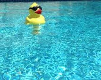 Pool Bath Bomb