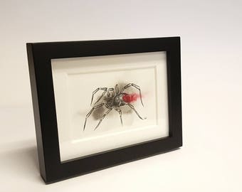 Adorably Vicious - Black Widow, Spider, Framed Painting, Pen & Ink, Illustration, Watercolor, Artwork, UNIQUE GIFT, Macabre Present