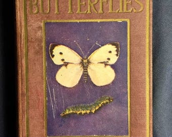 Butterflies Shown To Children Vintage Hardcover Reference Book