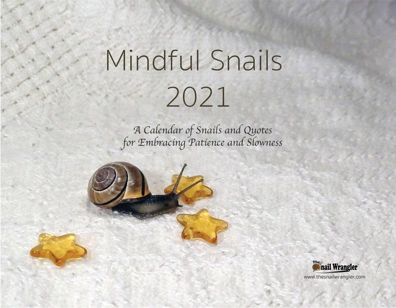 Mindful Snails 2021 Wall Calendar image 0