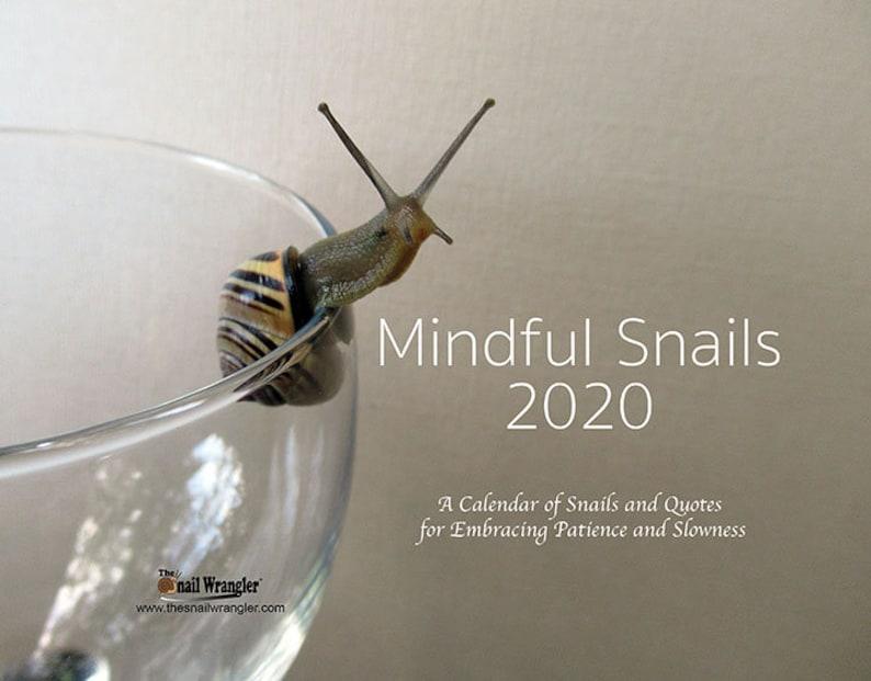 Mindful Snails 2020 Wall Calendar image 0