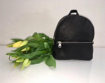 Mini Leather backpack, Tache